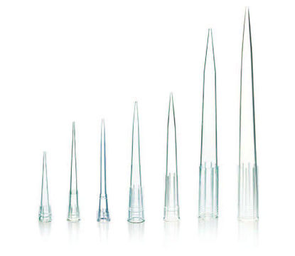 Picture of Globe Scientific Certified Low Retention Graduated Pipette Tips